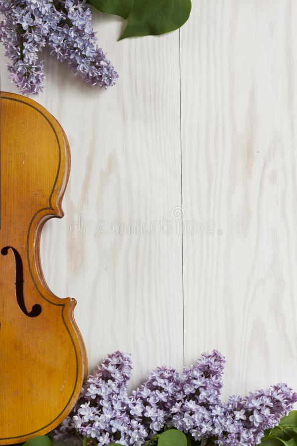 Old Violin and lilac flowers on white wooden background. Stringed musical instrument, top wiev, Love spring background royalty free stock photo