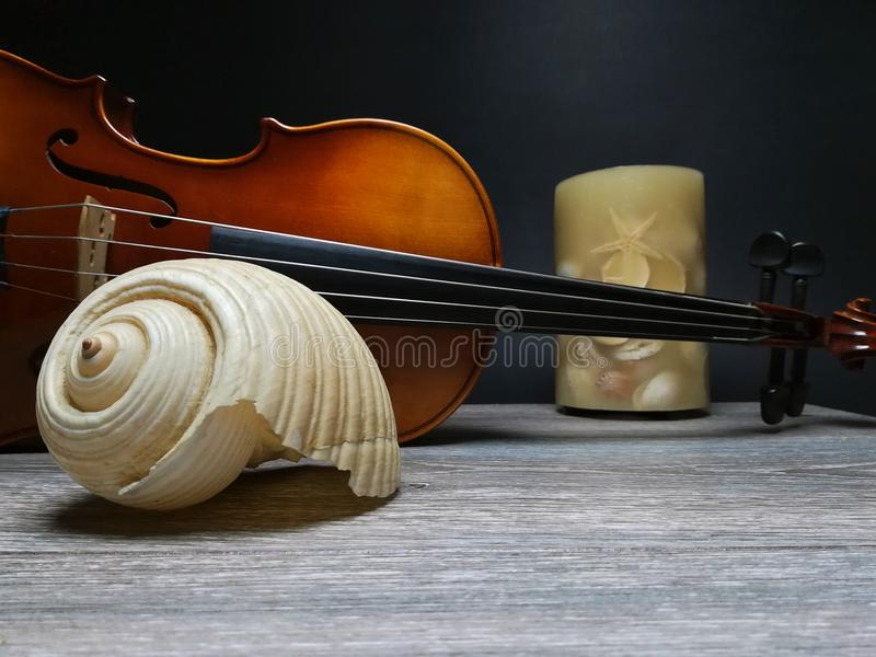 Violin, candle and old beautiful sea shell. Old violin, music instrument and beautiful sea shell, black background stock photography
