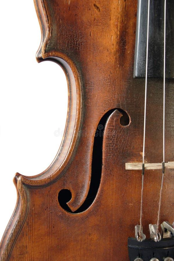 Old violine. Violine on the white background stock images