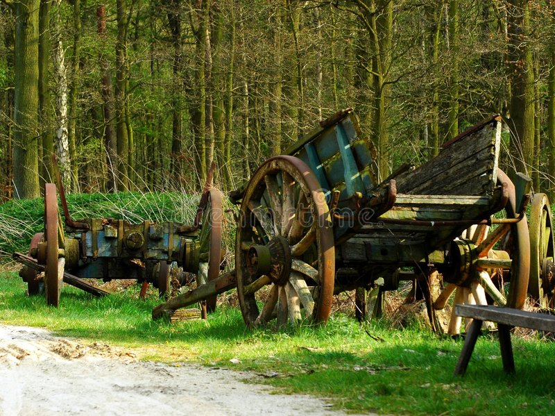 Download Old waggon. stock image. Image of farming, rural, forest - 103071