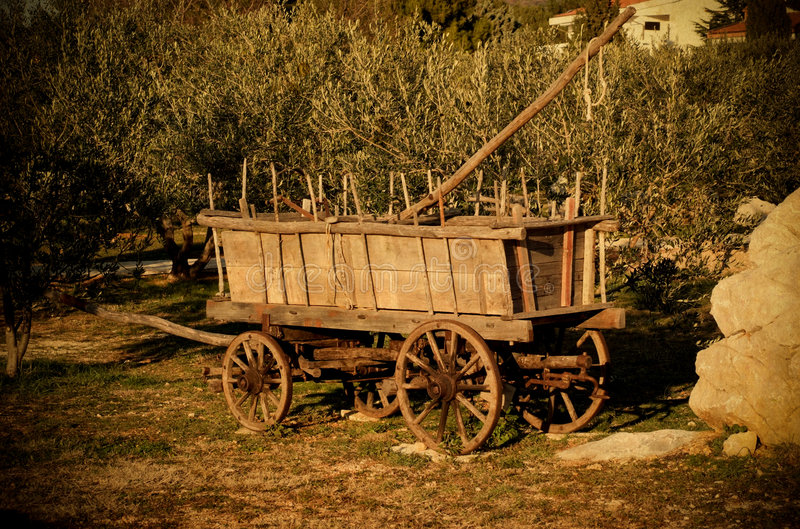 Old wagon. And olive trees on vintage background royalty free stock photography