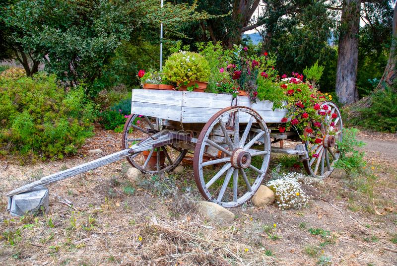 Old Wagon Flowers royalty free stock photo
