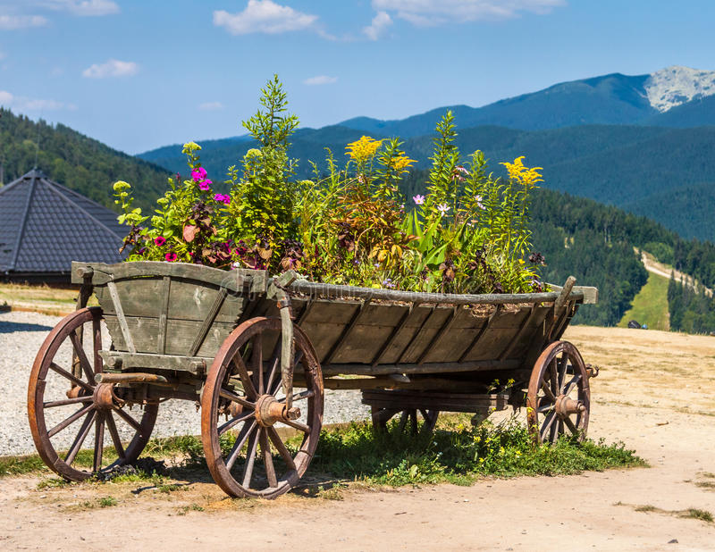 Old wagon like a planter. On the mountains background royalty free stock images
