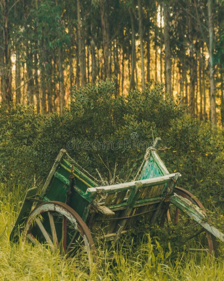 Old wagon in the middle of the grasses at sunrise. In Odemira, Portugal stock photography
