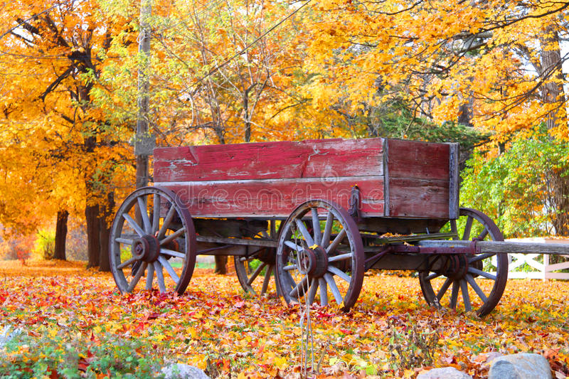 Old Wagon. Old red Wagon with autumn trees background royalty free stock image