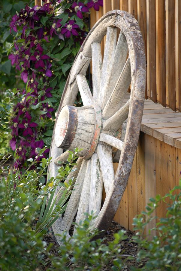 Old Wagon Wheel and Fence in Flower Garden for Decoration royalty free stock photo
