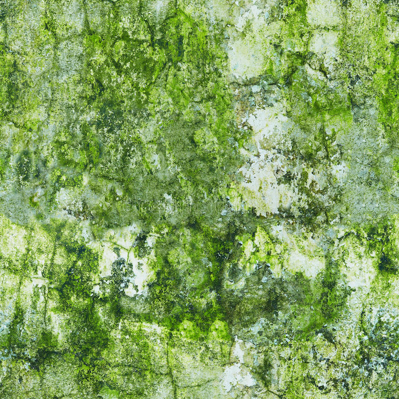 Download Old Wall In The Green Mold