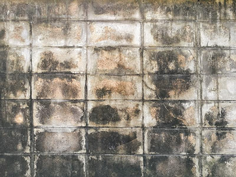 Cracks on the walls of old buildings are damaged. Wet with moss. Old, wall, moss, background, texture, dirty, grunge, building, crack, surface, concrete, pattern stock image