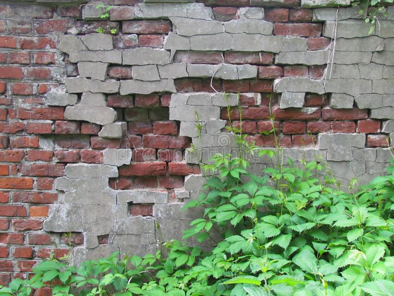 Old wall. Vintage decor. Old plaster and brick stock photos