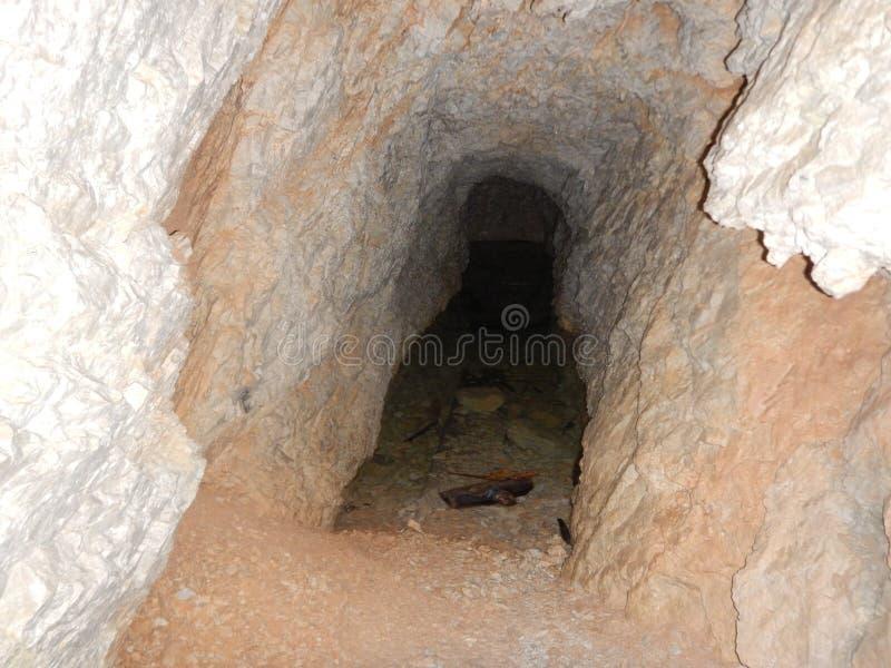 Old war tunel in sass di stria in dolomites. In italy stock photo