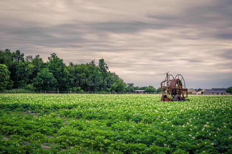 Old water pump on a potato field royalty free stock image