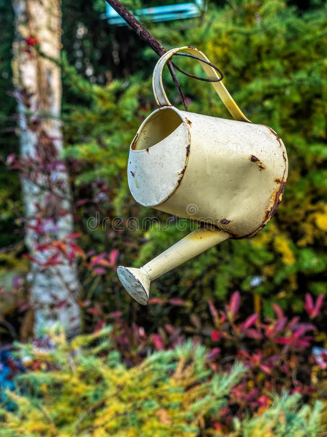 Old watering can in the garden stock photo