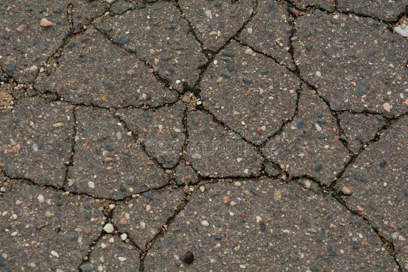 Old Weathered Cracked Grayish Asphalt. Texture royalty free stock image