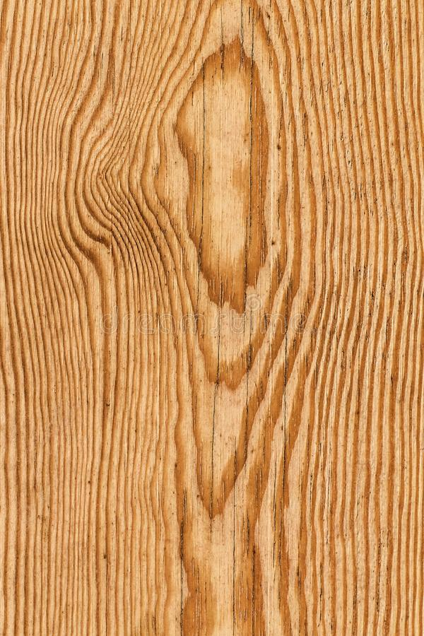 Free Old Weathered Knotted Varnished Pinewood Plank Grunge Texture Detail Stock Image - 114704021