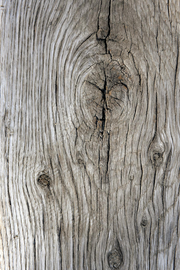 Old Weathered Wood royalty free stock photos