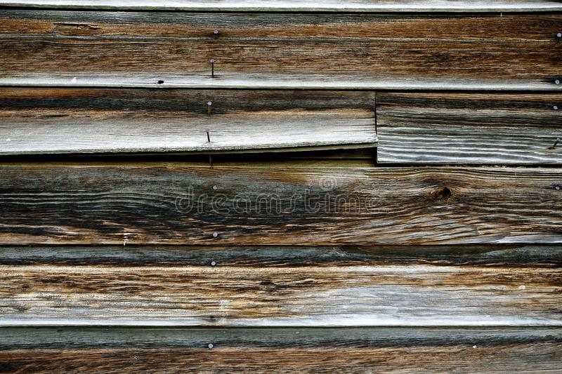 Old Weathered Wood of a Barn with Rusty Nails royalty free stock image