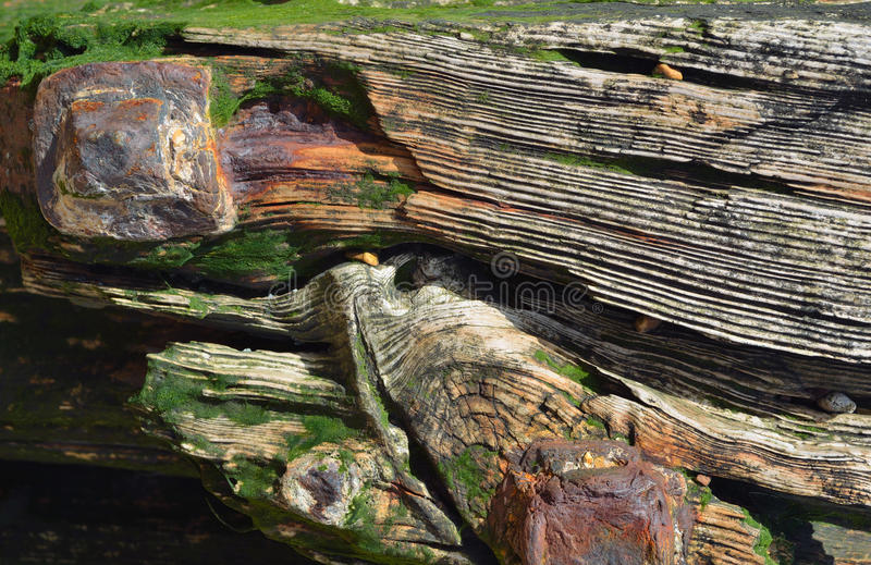 Old weathered Wood with rusting Bolts royalty free stock photography