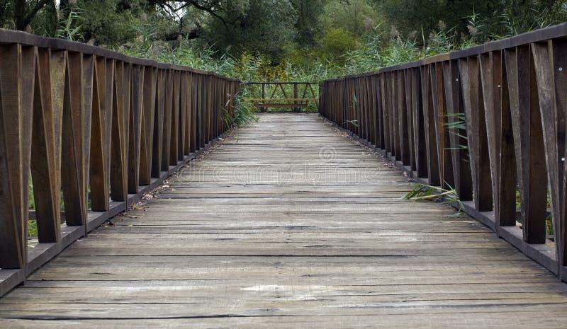 Wooden Bridge Pathway royalty free stock photography