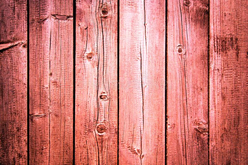 Old weathered wooden plank painted in living coral, pink color with metal strip, wooden texture wall background royalty free stock image