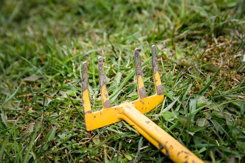 Old weeding tool or rake with missing branch abandoned lying in. Green grass stock image
