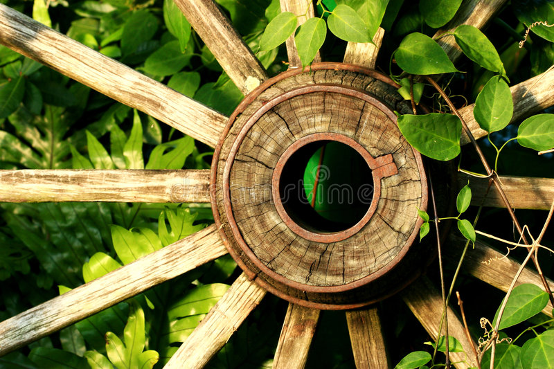 Download Old wheel stock photo. Image of wood, wooden, wheel, object - 3919342