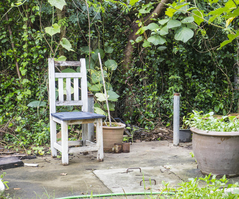 Old white chair in the garden. Empty old white chair in the garden royalty free stock images