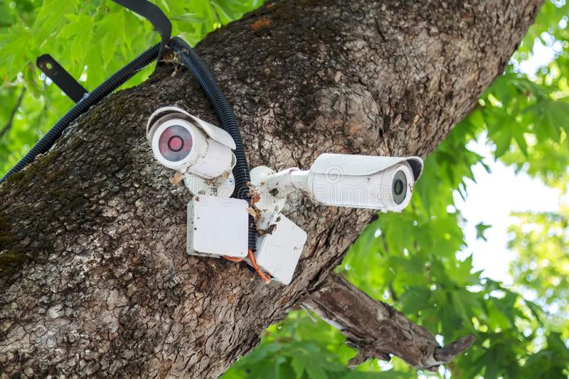 old white outdoor video surveillance cameras installed in several directions for easy monitoring of order in the Park stock photo