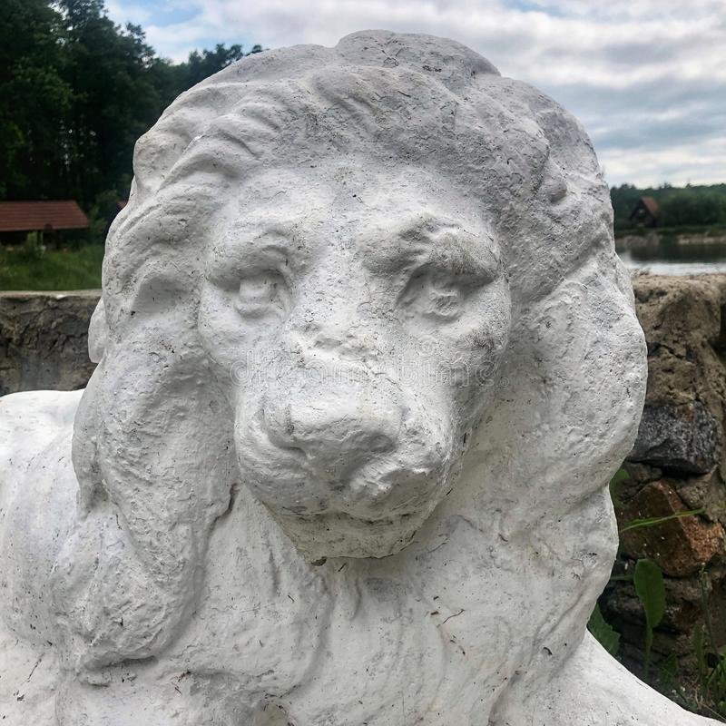 Old white statue of a lion face on background forest stock photo