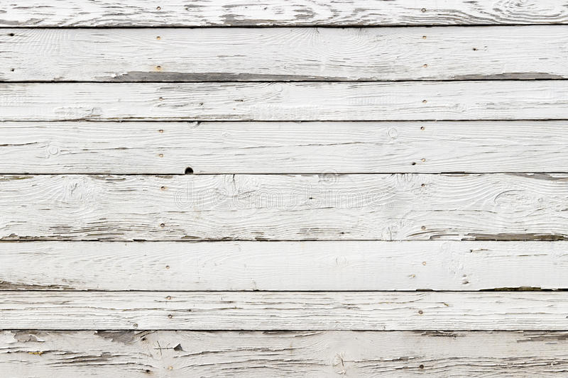 The old white wood texture with natural patterns background royalty free stock image