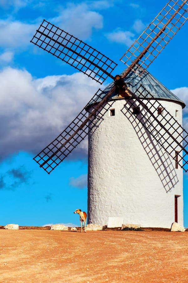 Old windmill in Campo de Criptana, Spain. A traditional white windmill in Campo de Criptana, Spain stock image