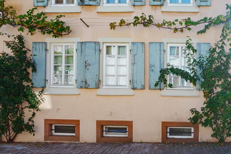 Old windows. Front house with old windows and grapevine in Rheinland Pfalz Germany stock image