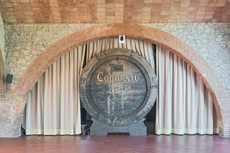 Old wine barrels in Codorniu winery in Spain royalty free stock image