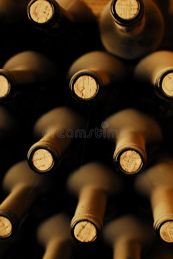 Old wine bottles royalty free stock photography