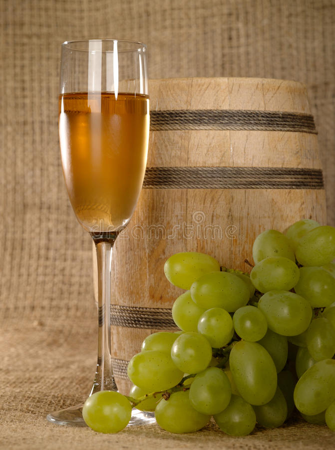 Free Old Wine Still-life With Grape Stock Photos - 10554973