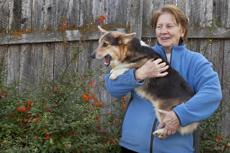 Old Woman With Corgi Puppy Stock Images