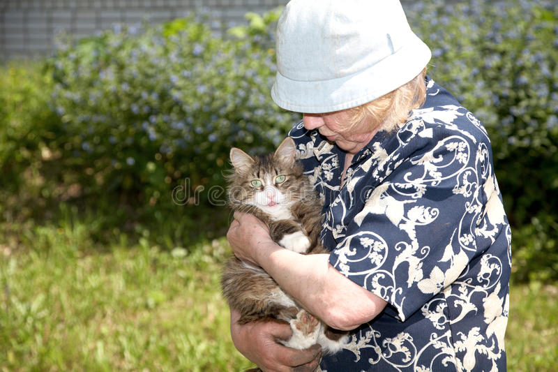 Download The old woman holds cat stock image. Image of grandmother - 14686651