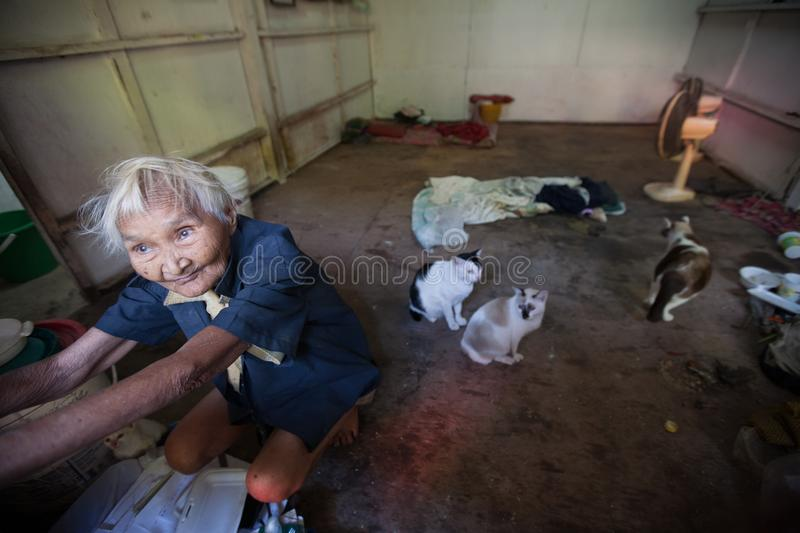 A old woman live alone with her cats in the Klong Toey slum in Bangkok. BANGKOK, THAILAND - DECEMBER 3, 2007 : A old woman live alone with her cats in the Klong royalty free stock photo