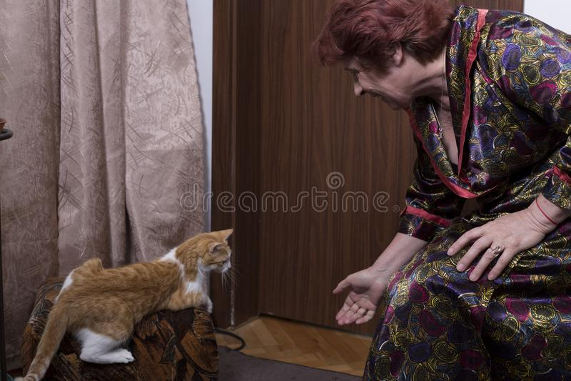 Old woman near by a brown wood door and a cat stock photography