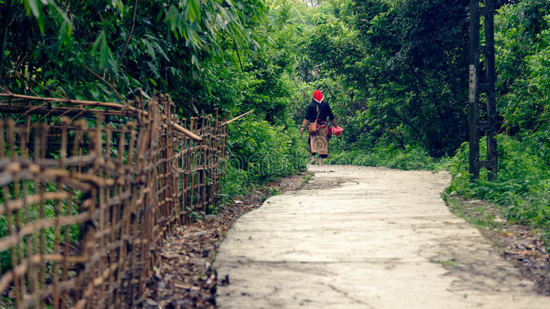 Old woman on path through woods. Old woman from a Thai minority tribe living in Sapa Vietnam, walking on a path through the woods carrying a basket (bag stock images