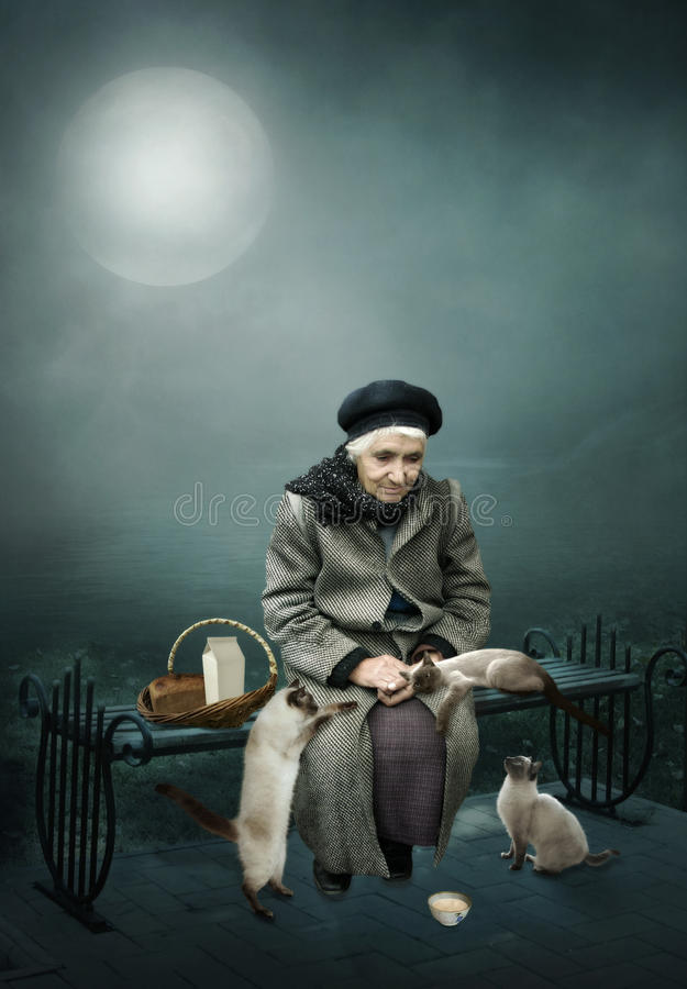 Old woman and Siamese cats. Old, lonely woman sitting on a bench at night under the moon feeds the homeless siamese cats.Care and graciousness stock images