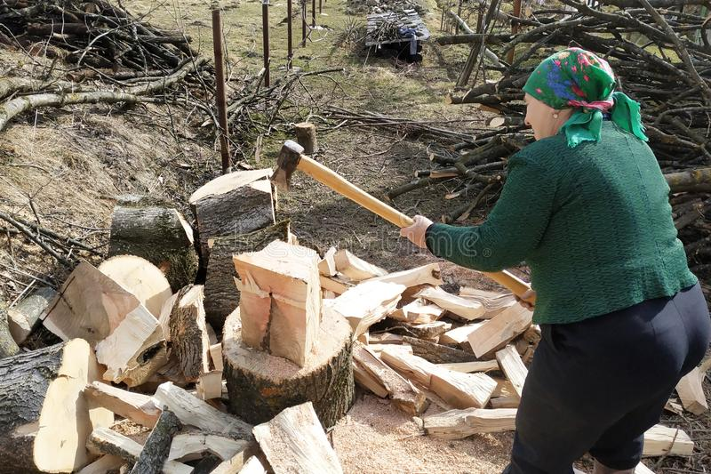 An old woman of a tavern shakes a firewood with an ax in the yard, prepares them for the winter. 2019 royalty free stock photo