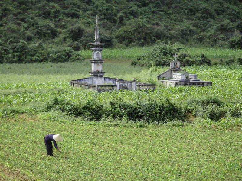 Ancient graves in vietnam stock image