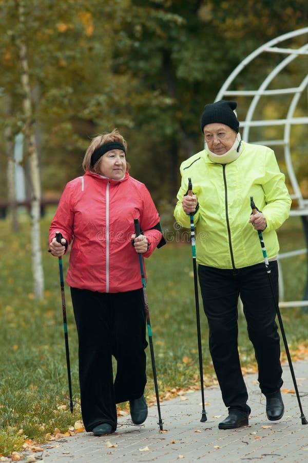 Old women in colorful jackets walking on sidewalk in an autumn park during a scandinavian walk. Talking stock image