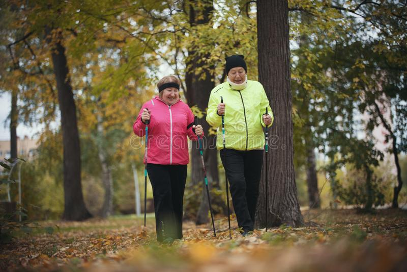 Old women walking in an autumn park during a scandinavian walk. Fall. Orange leaves. Old women walking in an autumn park during a scandinavian walk. Wide shot royalty free stock photography