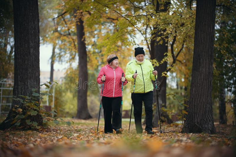Old women walking in an autumn park during a scandinavian walk. Fall season. Old women walking in an autumn park during a scandinavian walk. Wide shot stock photo