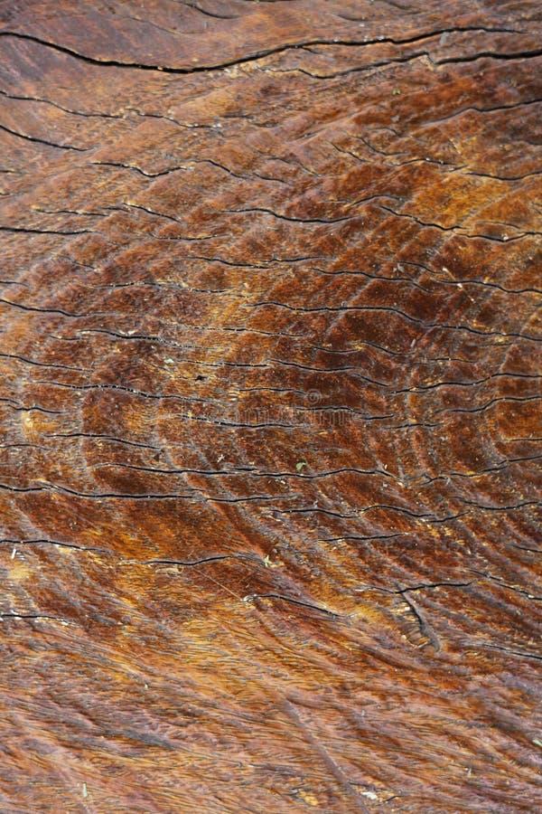 Download Old Wood Background stock image. Image of antique, floor - 16873625