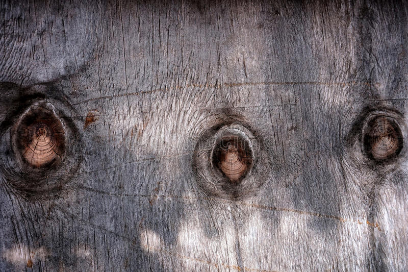 Download Old wood background stock photo. Image of up, natural - 38754896