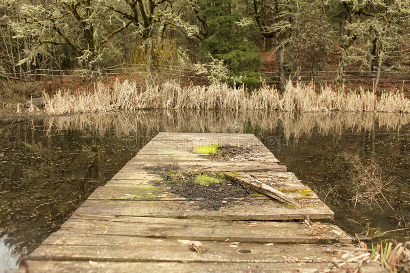Old Wood Dock Stock Photography