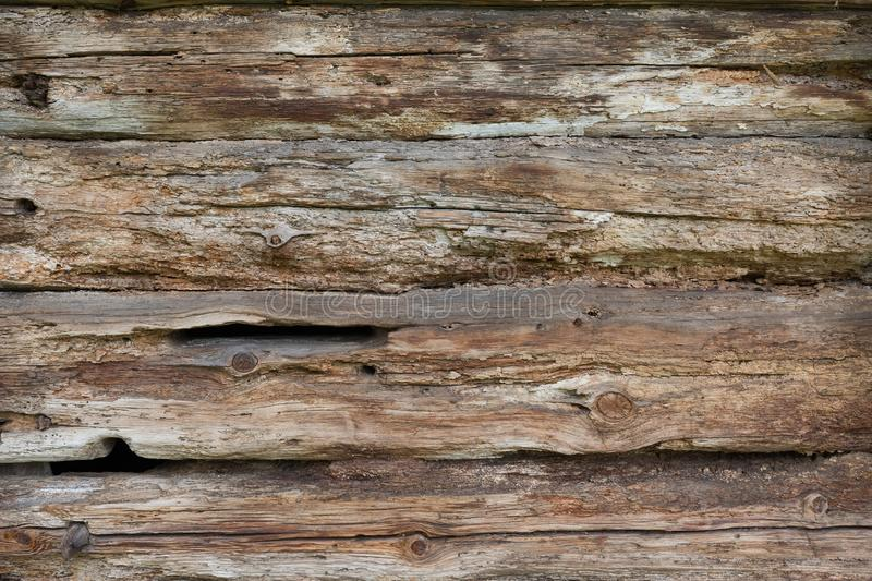 Old wood fence, wood texture background. Structure of a tree.  stock image