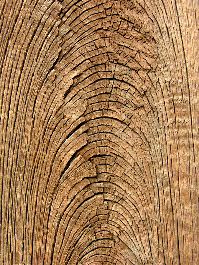 Free Old Wood Grain Texture Royalty Free Stock Photography - 730327